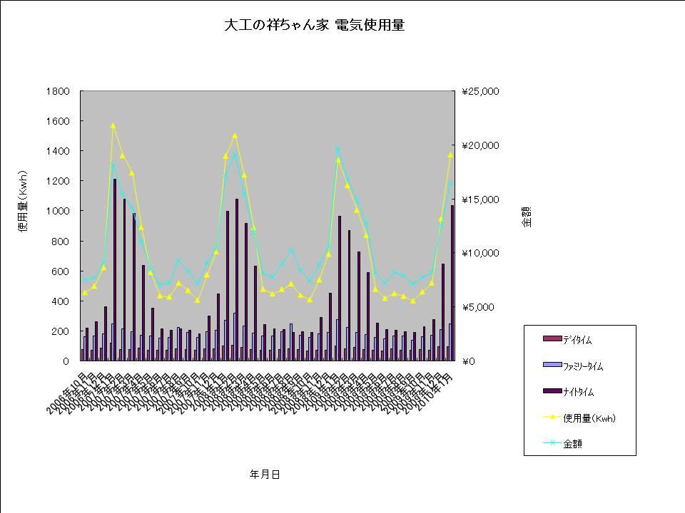大工の祥ちゃん家 電気使用量20100125.jpg